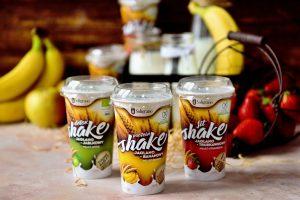 Shake jaglany