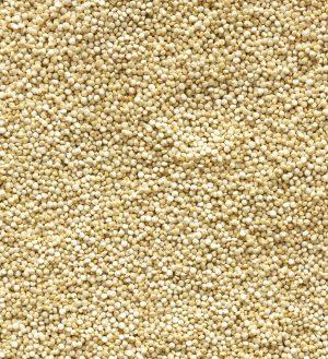 Ziarno quinoa